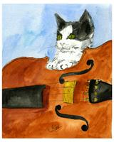 Kitten On Violin As Framed Poster