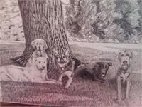 5 Dogs Under A Tree