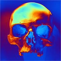 Skull In Blue And Gold As Framed Poster