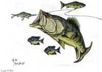 Big Bass and Bluegill Fishing  Original Drawing