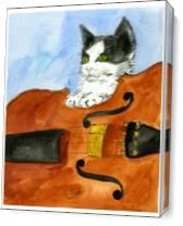 Kitten On Violin As Canvas