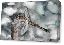 Dragonfly Painting Art Print As Canvas