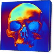 Skull In Blue And Gold As Canvas