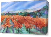 Autumn Vineyard As Canvas