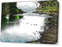 River Duck As Canvas