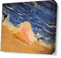 Tybee Island Conch Seashell As Canvas