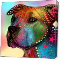 Pit Bull As Canvas